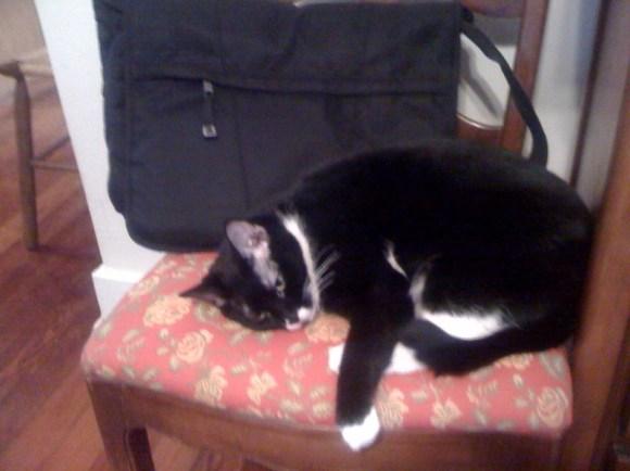 Della and the book bag