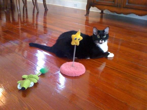 Della:toys