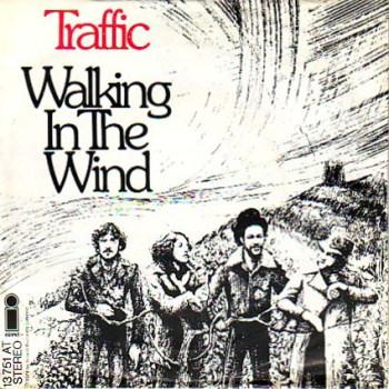 traffic-walking_in_the_wind_s_1