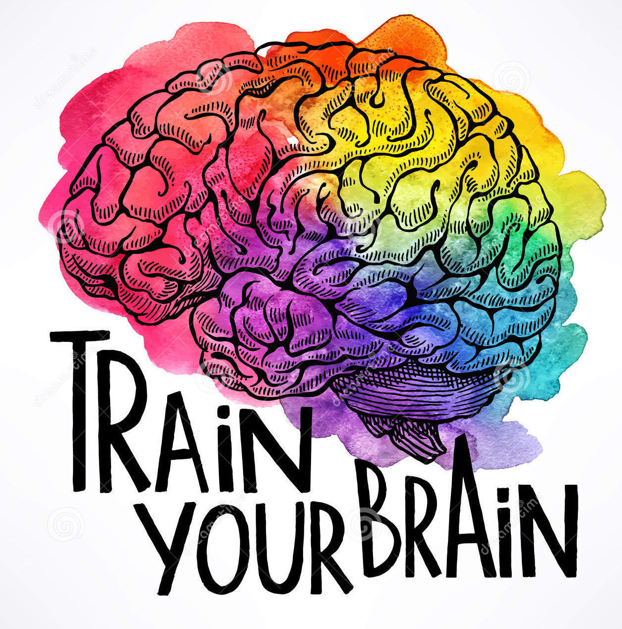 Discussion on this topic: Can You Train Your Brain, can-you-train-your-brain/
