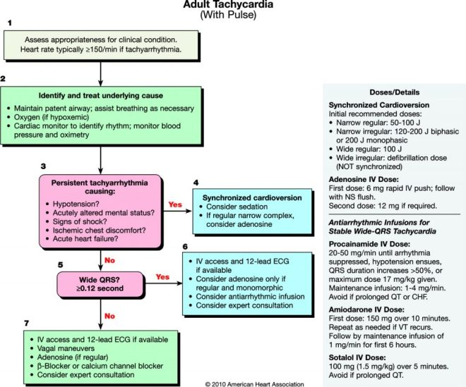 Adult Tachycardia Algorithm