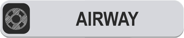 AIRWAY BUTTON.png