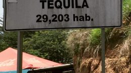 Tequila Factory Tour