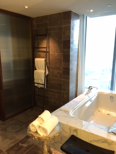 W Taipei Hotel Review Part 1 Points Summary