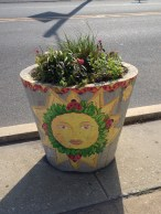 spring full sun