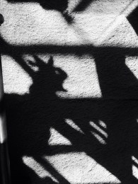 Mom making shadow puppets.