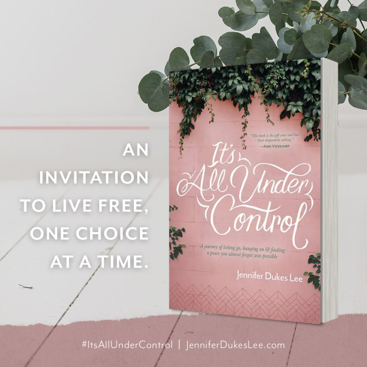 Book on Control- Excellent Christian non-fiction!