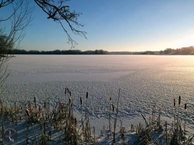 The lake is covered with ice