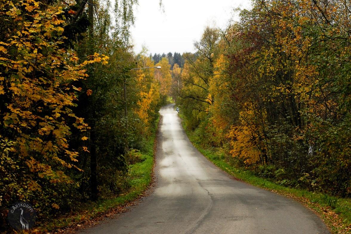 Way ii autumn