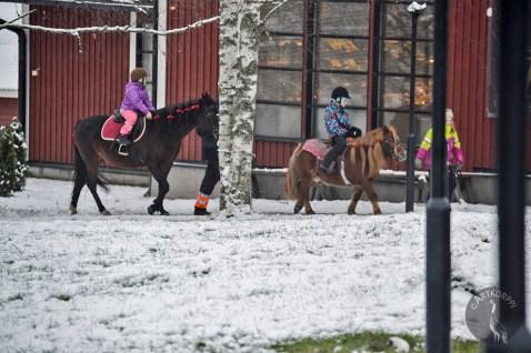 pony_riding0035p