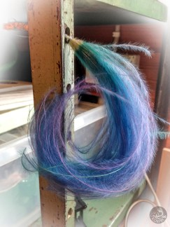 blue_feathers_5605p