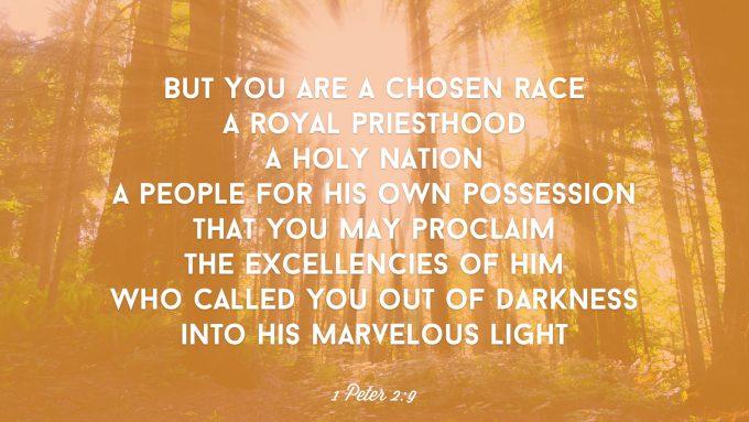 1 Peter 2 9