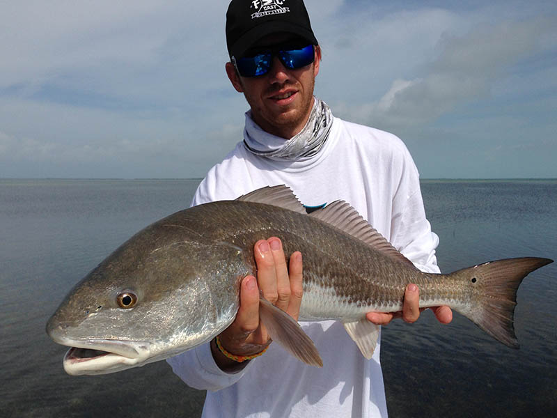 First Cast Outfitters, Islamarada Florida Redfish, fishing guides, captains, outfitters