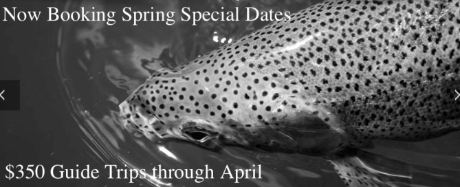 spring special, missouri river, guide trips