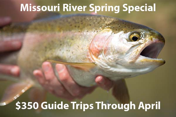 missouri river spring special, missouri river, craig montana, firstcastoutfitters