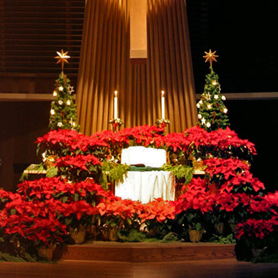 Sanctuary at Christmas