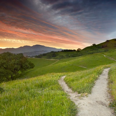 view of a trail in the hills