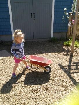 Getting a workout using a wheelbarrow