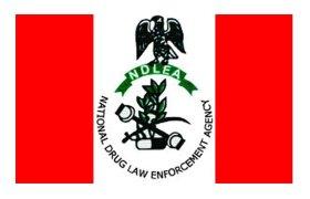 Functions of NDLEA in Nigeria