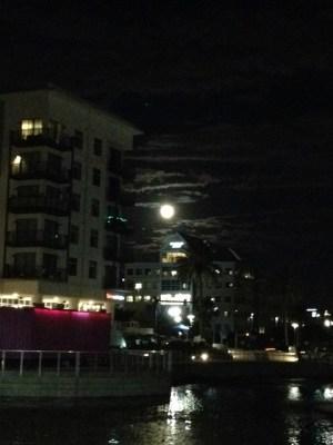 Moonlit nightsm