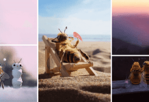Amazing Bee Photo Manipulations That Will Save Both You and The Earth!