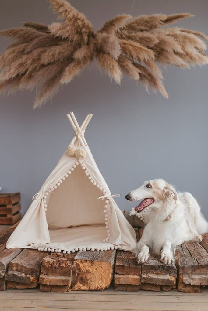 Luxury tepee house for pets