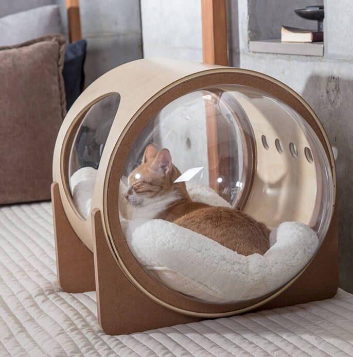 Modern glass pet house ideas