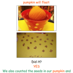 Pumpkin Prediction Freebie