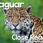 Jaguar Close Read {Giveaway}