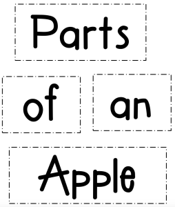 Parts of an apple labels