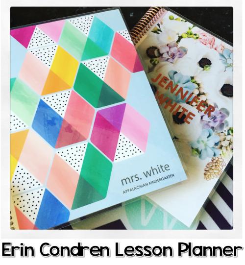 Erin Condren Lesson Planner