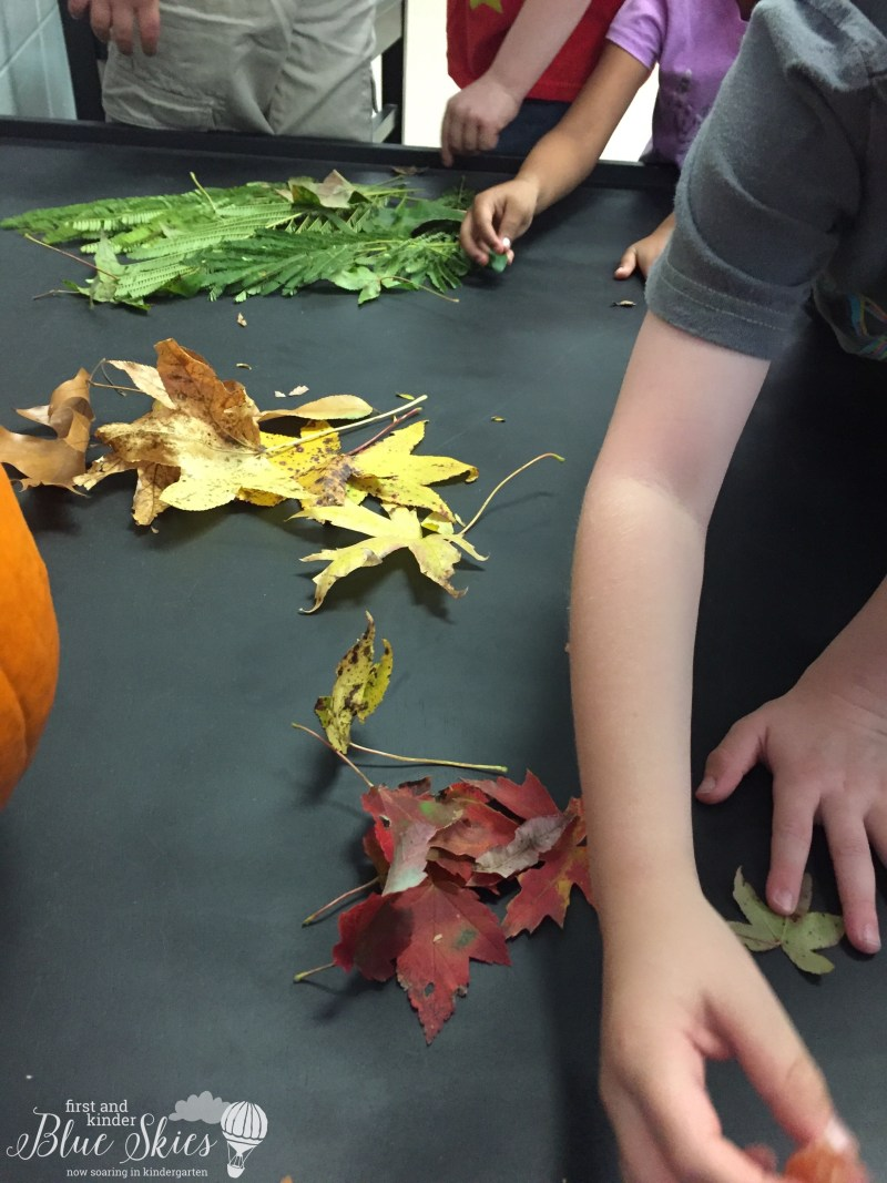 leaf-hunt-activity