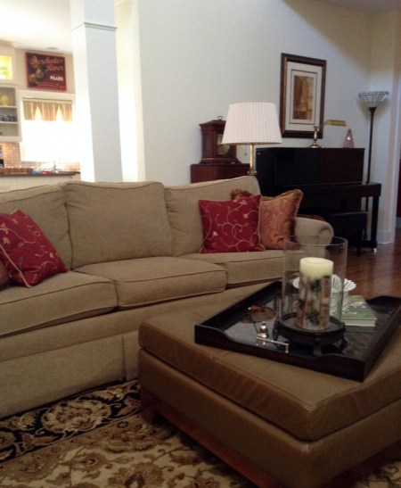 dks liv rm couch (2)