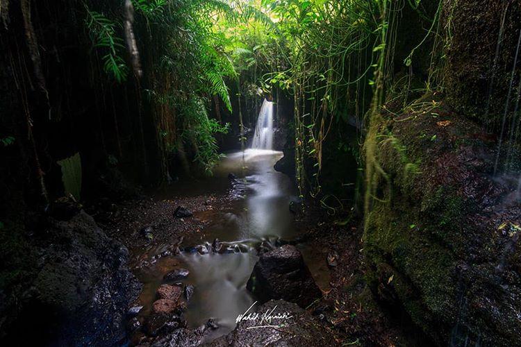 Wisata Alam Di Desa Tetebatu Lombok Yang Sangat Direkomendasikan