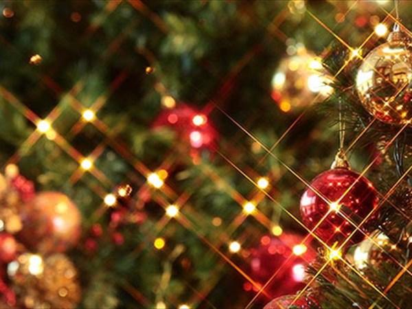 小さなクリスマスプレゼント 〜願いを込めたみんなのツリー〜