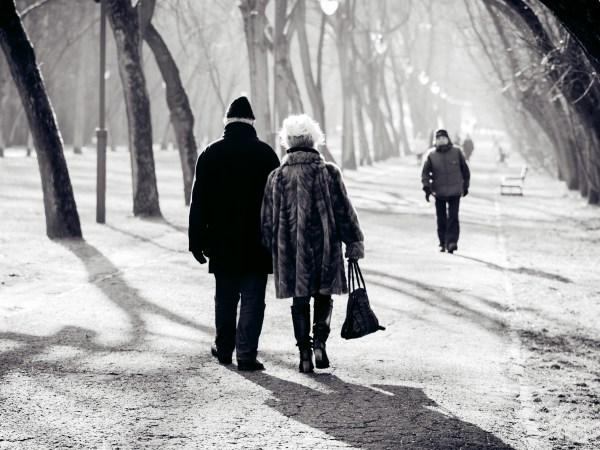 この世で一番美しいものは、ずっと連れ添った老夫婦の後ろ姿だった。
