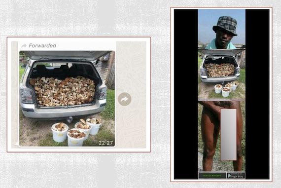 View Of El Negro De Whatsapp Meme Digital Blackface And Racism