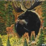 majestic_moose copy