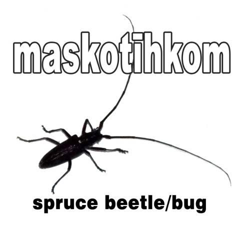 spruce_bug
