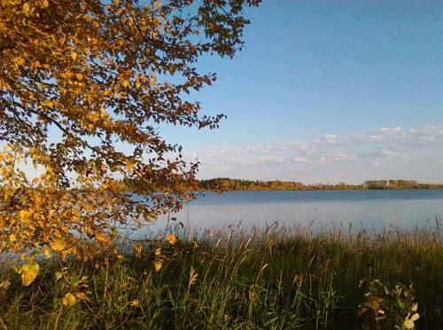 Six Seasons in Woodland Cree (La Ronge, SK)
