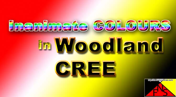 Inanimate Colours in Woodland Cree
