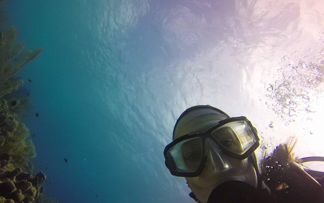PADI Women Scuba Diving Update