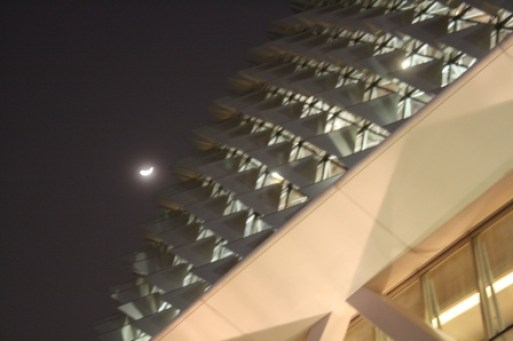 The thorny roof of the Esplanade reminds me of the durian fruit. Shown here with the moon shining at the background.
