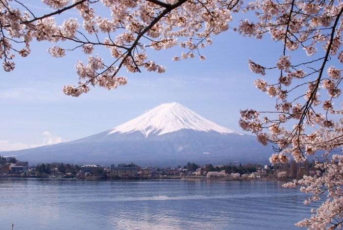 """Lake Kawaguchiko Sakura Mount Fuji 3"" by Midori - Own work. Licensed under CC BY 3.0 via Wikimedia Commons"
