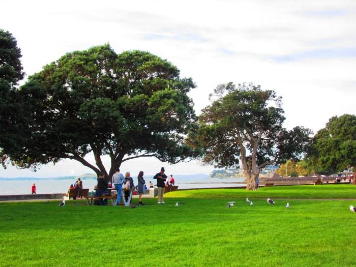 Mission Bay Reserve