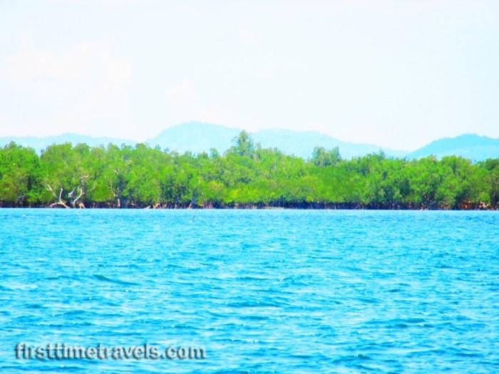 Suyac Island Magrove Eco-park