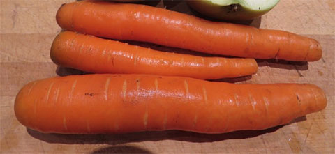 Sweet and Crunchy local carrots in January in Dawson?