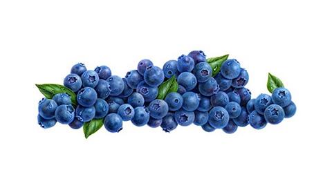 Gerard's Blog: I Found No Thrill On Blueberry Hill