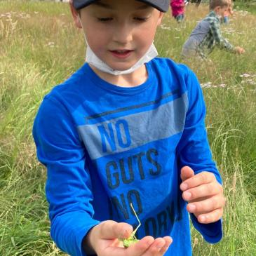 Unsere Zweitklässler entdecken den Lebensraum Wiese