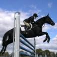cavallo_salto-ostacoli